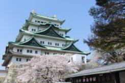 🌸2017春のデート情報🌸~名古屋城・名城公園・徳川園~