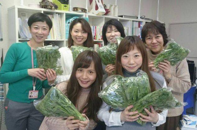 農家の会員様から春菊を頂きました(^_-)-☆
